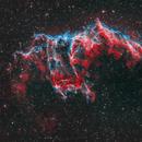 NGC 6995 in HOO-Color,                                Phel