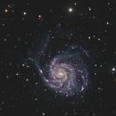 M101 - The Pinwheel Galaxy,                                Ron