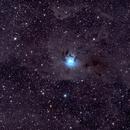 NGC 7023  -  Iris Nebula,                                David Frost