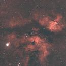 IC 1318 Gamma Cygni Nebula-Ha-HOO,                                Adel Kildeev