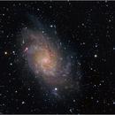 Triangulum Galaxy – Messier 33,                                Randal Healey