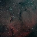 Elephant Nebula,                                Byron Miller