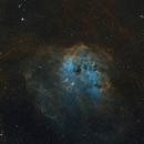 IC410 The Tadpole Nebula,                                Barry Wilson