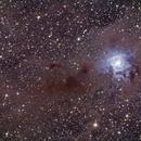 Iris Nebula (NGC7023),                                Sasho Panov