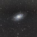 The Triangulum Galaxy (M33),                                Carl Tanner