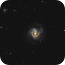 M61 with Supernova,                                Scott Tucker
