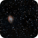 Messier's 1st: The Crab Nebula,                                Anderson Thrasher