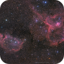 Queen's little garden ——— Heart & Soul ———IC1805 & IC1848(Mosaic1*2),                                WildDuck