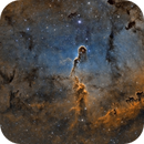 IC1396 - The Elephants Trunk,                                Paddy Gilliland