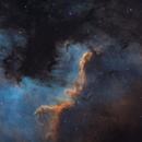 Cygnus Wall,                                Gabriel Dornier