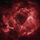 Rosette Nebula Naturelle,                                Markus Eisenstöck