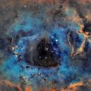 NGC 2244 Rosette Nebula SHO,                                Jochem Maas