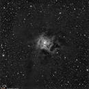 NGC 7023 Iris nebula,                                Felliscopio