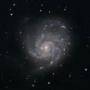M101 Pinwheel Galaxy 25.03.2021,                                SwissCheese