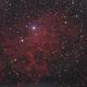 Flaming Star Nebula,                                Nikolay Vdovin