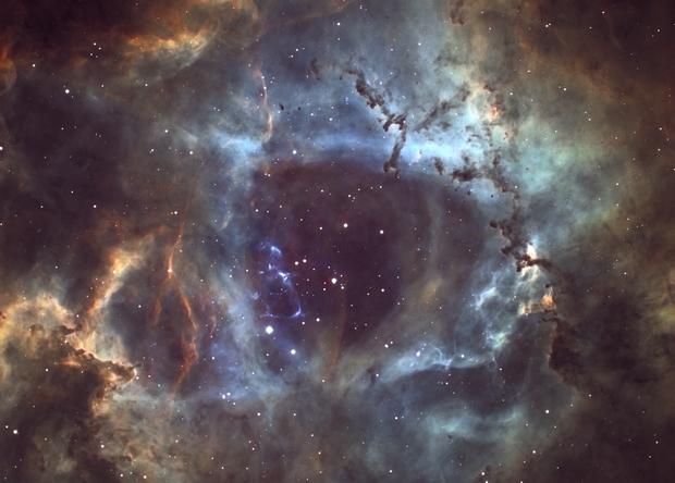NGC 2237 Rosette Nebula,                                Barczynski