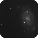 NGC 2403 with ASI120MM,                                robbeh