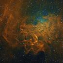 Flaming Star Nebula IC 405,                                Dan Kusz