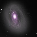 Bodes Galaxie,                                Jeff Clayton