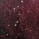 Elephant Trunk Nebula,                                Ryan Fraser