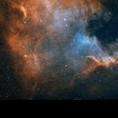 North America Nebula bicolor HOO,                                Jason Doyle Sr