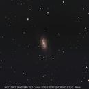 NGC 2903,                                Carsten Moos