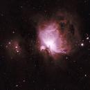 M42: The Orion Nebula Bicolour (Ha/OIII) (2019),                                Daniel Tackley