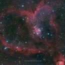 Nebulosa Corazón,                                Astrofotógrafos