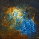 Lion Nebula or Triceratops Nebula   Sh2-132 SHO Hubble Palette RASA8,                                Brandon Tackett