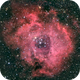 Rosette Nebula,                                Chris Pagan