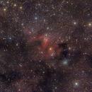 Cave Nebula region,                                Jenafan
