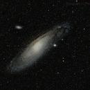 Andromeda, M-31,                                Bill Taylor