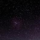 Rosete nebula Region,                                Carlos Ferraz