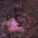 NGC 7000 - North America Nebula,                                Steve Ludwig