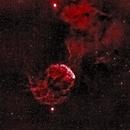 Jellyfish Nebula IC443 in Ha. Tinted,                                morrienz