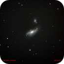 NGC4490,                                Adriano Inghes