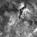 Cygnus Mosaic,                                Carl Weber