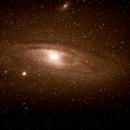 Andromeda,                                Awakening Star