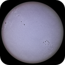 Sun Disk Whitelight,                                NeilMac