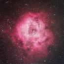 Rosette Nebula,                                acaballero