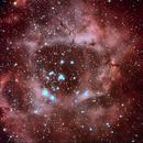 Rosette Nebula,                                Jan Schneidler