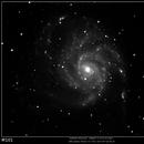 M101,                                Jacek Patka