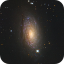 M63 Sunflower Galaxy - NGC 5055,                                Jerry Macon