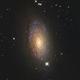 M63 Sunflower Galaxy - NGC 5055,                                Jerry Macon