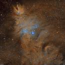 NGC2264 cone nebula & christmas tree cluster,                                lukfer