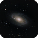 M81, First galaxy with ASI 294MC PRO,                                Astro Dad