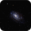 Galaxy NGC 2403 in the Constellation Camelopardalis,                                Tom Wildoner