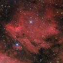 Pelican nebula,                                Amir H. Abolfath