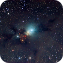 NGC 1333,                                Peter