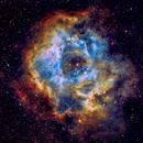 Rossete Nebula in SHO,                                Anca Popa